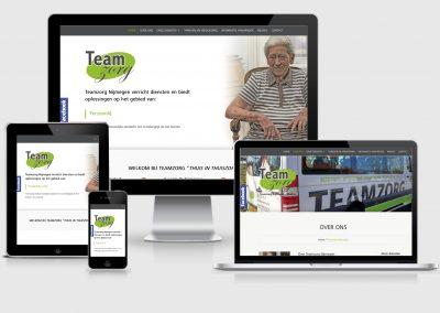 TeamZorg website